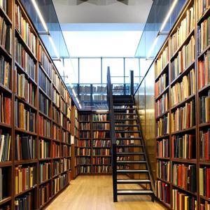 Библиотеки Путятино